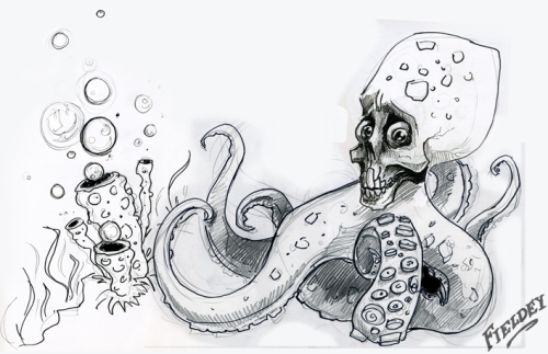 Sketch of skull-ocotopus